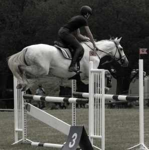 ICB Show Jumping Fun Show